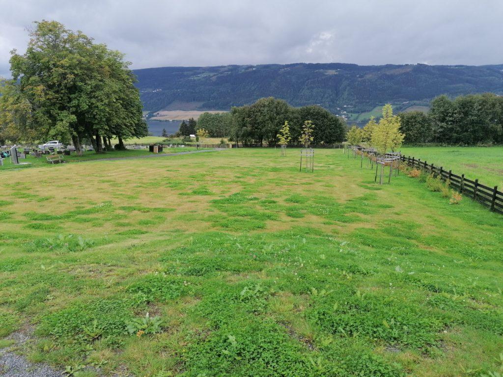 Lillehammer Muslimsk gravfelt