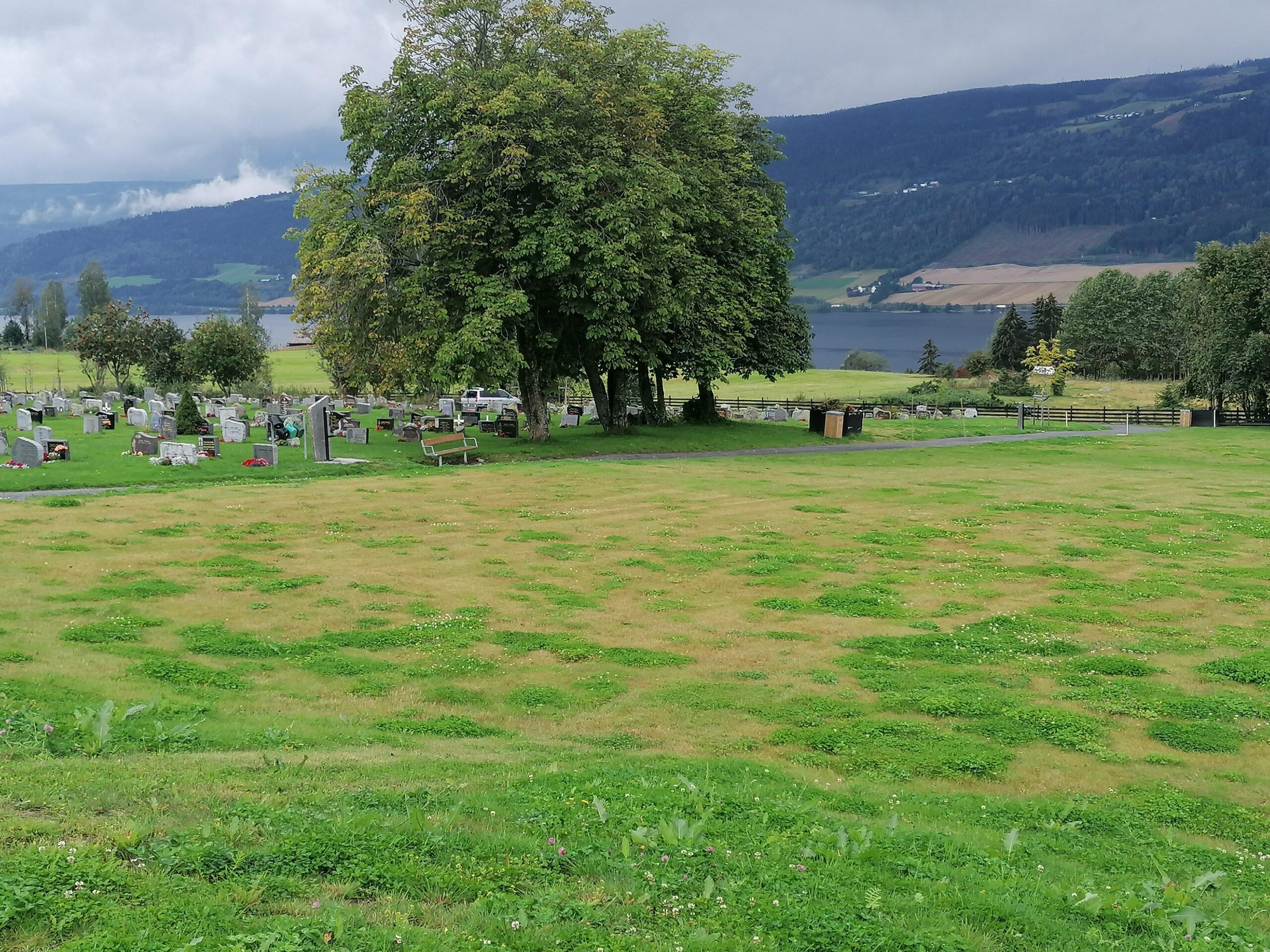 Lillehammer søre Ål Muslimsk gravfelt - Muslimsk Begravelsesbyrå